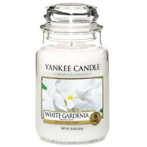 White gardenia giara grande