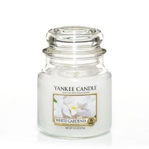 White gardenia  giara media